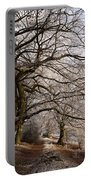 Frosted Path Portable Battery Charger