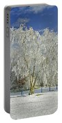 Frosted Trees - Newton Road Park Portable Battery Charger
