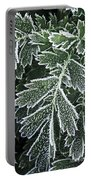 Frosty Leaves Macro Portable Battery Charger