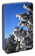 Frosty Limbs Portable Battery Charger