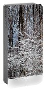 Frosty Portable Battery Charger