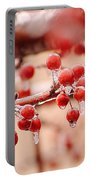 Frozen Berries Portable Battery Charger