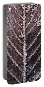 Frozen Leaf Portable Battery Charger by Anne Gilbert