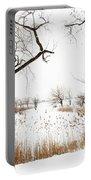 Frozen Marshland IIi Portable Battery Charger