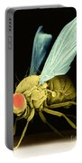 Fruit Fly Sem Portable Battery Charger