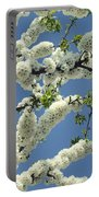 Fruit Tree Blooms Portable Battery Charger