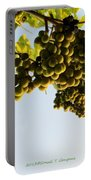 Fruits Of Nature Portable Battery Charger