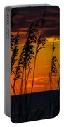 Ft. Myers Sea Oats Portable Battery Charger