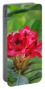 Fuchsia Rhododendron Moore State Park Portable Battery Charger