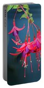 Fuchsia Portable Battery Charger