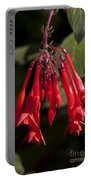 Fucshia Red Flower Portable Battery Charger