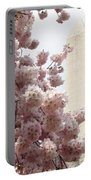 Full Bloom In Dc Portable Battery Charger