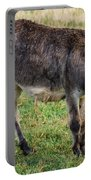 Full Grown Donkey Grazing Portable Battery Charger