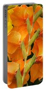 Full Stem Gladiolus Portable Battery Charger