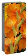 Full Stem Gladiolus Portable Battery Charger