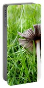 Fungi Portable Battery Charger