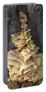 Fungi On Oak Portable Battery Charger
