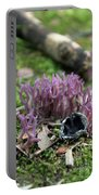 Fungus 6 Portable Battery Charger