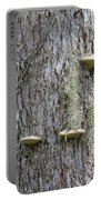 Fungus On Tree Portable Battery Charger