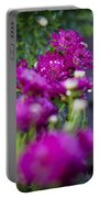 Fuschia Mums 1 Portable Battery Charger