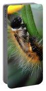 Fuzzy Caterpillar Portable Battery Charger