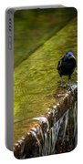 Gackle 2 Portable Battery Charger