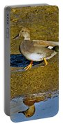 Gadwall Drake On Mudflat Portable Battery Charger
