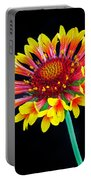 Gaillardia Arizona Sun Portable Battery Charger