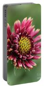 Gaillardia Pulchella Named Sundance Bicolor Portable Battery Charger