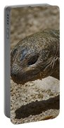 Galapagos Giant Tortoise Portable Battery Charger