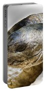Galapagos Giant Tortoise V2 Portable Battery Charger