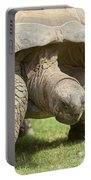 Galapagos Turtle Portable Battery Charger