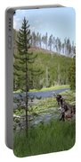 Gallatin River Yellowstone  Portable Battery Charger