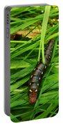 Gallium Sphinx Caterpillar Portable Battery Charger
