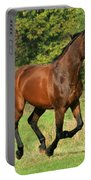 Gallop Portable Battery Charger