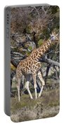 Galloping Giraffe  Portable Battery Charger