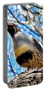 Gambel's Quail II Portable Battery Charger