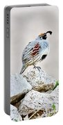 Gambel's Quail Portable Battery Charger by Scott Pellegrin