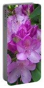 Garden Beauty Portable Battery Charger