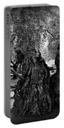 Garden Of Gethsemane Olive Tree Portable Battery Charger