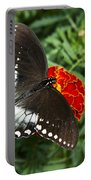 Garden Spice Butterfly Portable Battery Charger