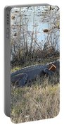Gator Football Portable Battery Charger by Al Powell Photography USA