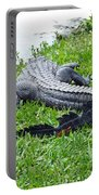 Gator In The Grass Portable Battery Charger