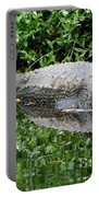 Gator Portable Battery Charger