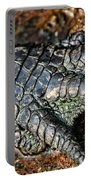 Gator Manicure Portable Battery Charger
