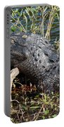 Gator On A Stick Portable Battery Charger