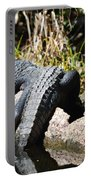 Gator Sunbathing Portable Battery Charger