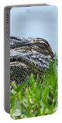 Gator Watching Portable Battery Charger