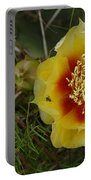 Gattinger's Prairie Clover And Prickly Pear Flower Portable Battery Charger