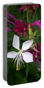 Gaura Lindheimeri Whirling Butterflies With Agastache Ava Portable Battery Charger